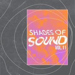 Joe Morris l Shades of Sound Vol. 11