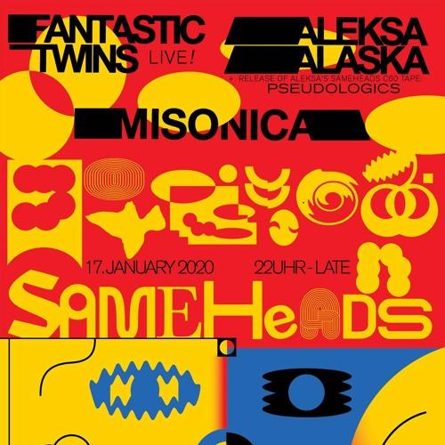 Aleksa Alaska at Sameheads (17.01.20) - live dj cut