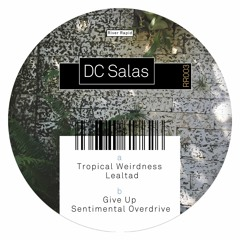 """DC Salas - """"RR003 EP"""" - River Rapid Records(Out on March 9th)"""