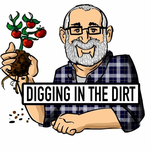 The Baltimore Compost Collective - Marvin Hayes  Interview  - Digging in the Dirt