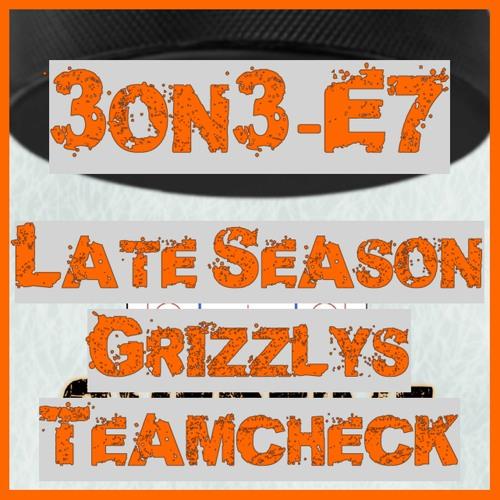 3on3-E7 - Late Season Grizzlys Teamcheck