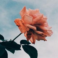 Show me love ft. Myko Bellin & Shania Jurado