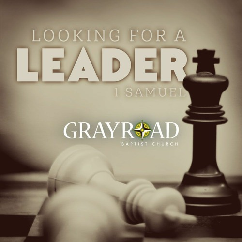 Looking for a Leader