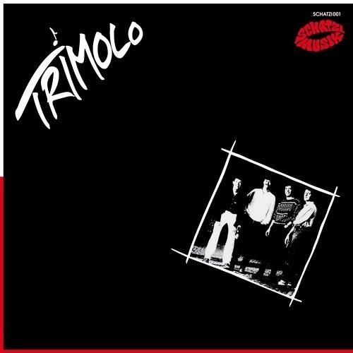 """DC Promo Tracks #538: Trimolo """"Tempo 100 (Feierwerk Version)"""""""