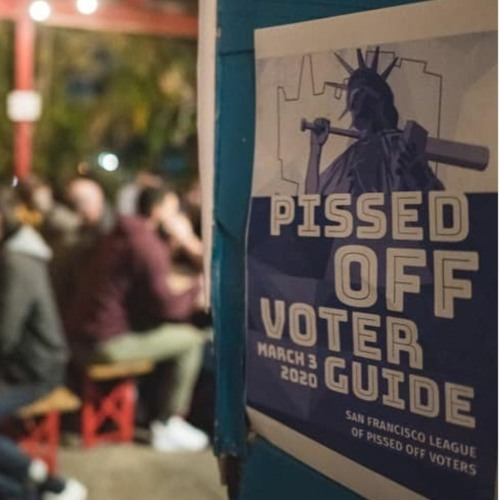 Pissed Off Voter Guide for March 3, 2020 Primary
