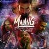 Download Ho Ja Mast Malang Tu   MALANG_beingharoonjaved Mp3