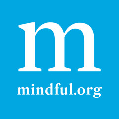 Cultivating Equanimity: A Guided Mindfulness Practice to Cool the Fires of Reactivity and Find Steady Ground