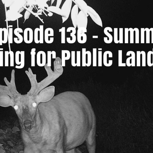 Episode 136 - Summer Scouting for Public Land Bucks