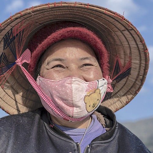 Vietnam: A Remarkable Response with Limited Means