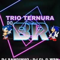 == 9 MINUTINHOS DO TRIO TERNURA DO BR( (DJ XANDINHO DJ CL & WSN) )163BPM 2020.mp3