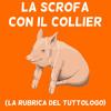 Download Puntata Nove - Cristina D'Avena è sopravvalutata (creato con Spreaker) Mp3
