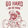 Download Go Hard Freestyle Mp3