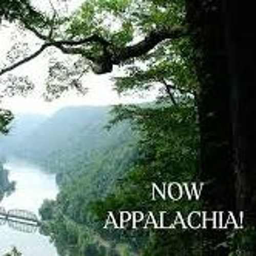 Now, Appalachia Interview with Author Amanda Eyre Ward