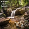 08 Nature Sounds, Rain Sounds and Sleep Therapy
