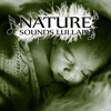 Nature Sounds Lullaby - Background Music, Relaxing Massage, Calm Sleep, Sleep Music to Help You Relax all Night