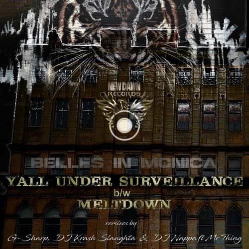Y'All Under Surveillance / Meltdown