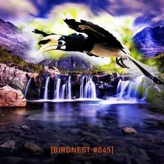 BIRDNEST #045 | Deep Sunday Flight | Podcast by The Lahar