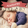 Natures Lullaby - Best Healing Sleep Songs, Deep Sleep & Meditation for Adult and Baby, Quiet Lullaby