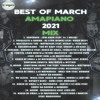 Amapiano Mix Best of March 2021 - DjMobe