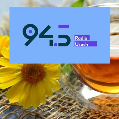 """Entrevista Radio USACH - Programa All we need is Lab """"Día de la Miel"""""""