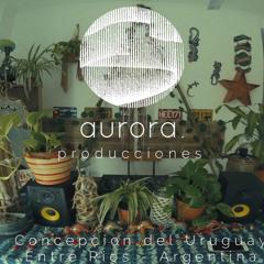 aurora 1.3