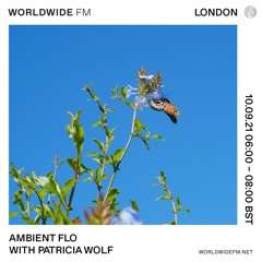 Patricia Wolf's Ambient Flo Mix For Worldwide FM London
