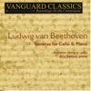 Sonata No. 1 in F Major, Op. 5, No. 1: II. Allegro vivace