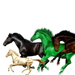 Old Town Road (Remix) [feat. Billy Ray Cyrus, Mason Ramsey & Young Thug]