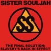 The Final Solution: Slavery's Back In Effect (Acapella)