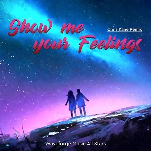 WMAS - Show Me Your Feelings (Chris Kane Remix)