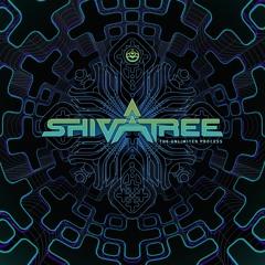 Shivatree - The Unlimited Process (Dj Mix)