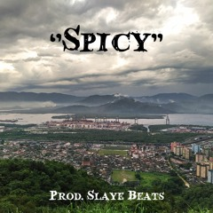 ''Spicy'' Afrobeat X Dancehall Type Beat F#maj 97bpm MASTERED MP3