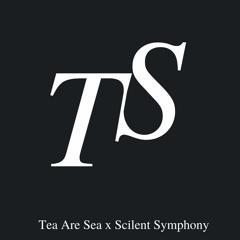 Fading Echoes w/ Tea Are Sea