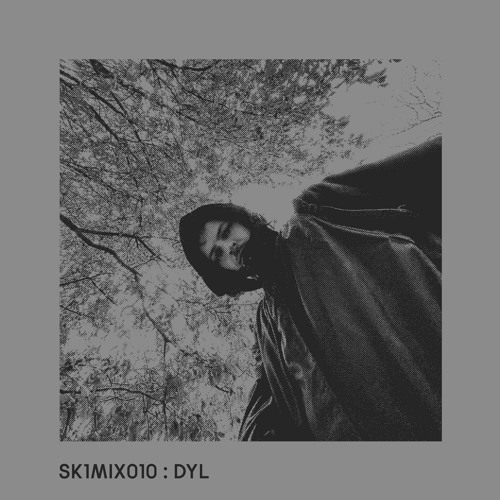 SK1MIX010 : DYL