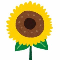 Beside Of Sunflowers - Luuc1A