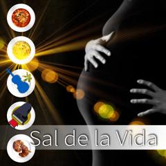 Sal de la Vida – Tranquilas Clásicas Canciones para las Mujeres Embarazadas y Bebes en el Vientre Materno, Reducir el Estrés, Harmonia Interior, Preparo para Recibirte, Relajación para Mamá y Bebé