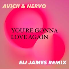 Avicii & Nervo - You're Gonna Love Again (Eli James Remix)