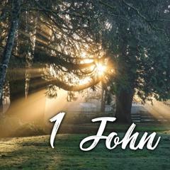 1 John 2:3-11 (Week 3)