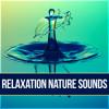 Salton Sea (Relax)