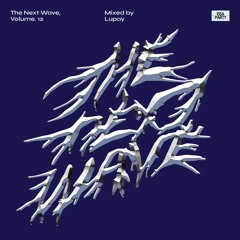 The Next Wave, Volume. 12 - Mixed by Lupay