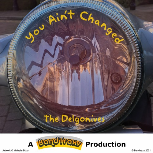 'You Ain't Changed' by The Delgonives