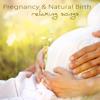 Piano Sonata No.12 in F Major K. 332: II. Adagio (Mozart Music for Pregnancy)