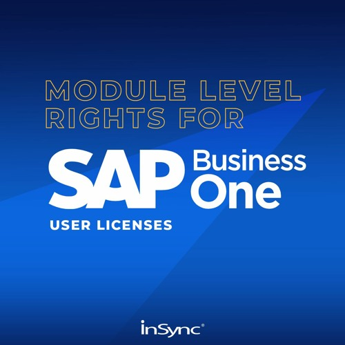 Module Level Rights For SAP Business One User Licenses | InSync