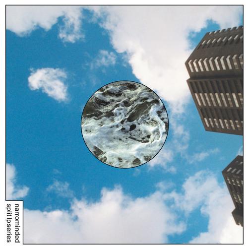 Narrominded Split LP Series #4