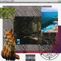 Lost Boys (feat. Mac Miller & Trinidad James) Artwork