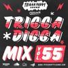 Download Trigga Happy Sound  - Trigga Digga Mix Vol. 55 (Dancehall Mix 2020 Ft Konshens, JDon Heights) Mp3
