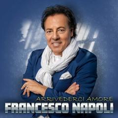 Francesco Napoli & BOYS - ARRIVEDERCI AMORE