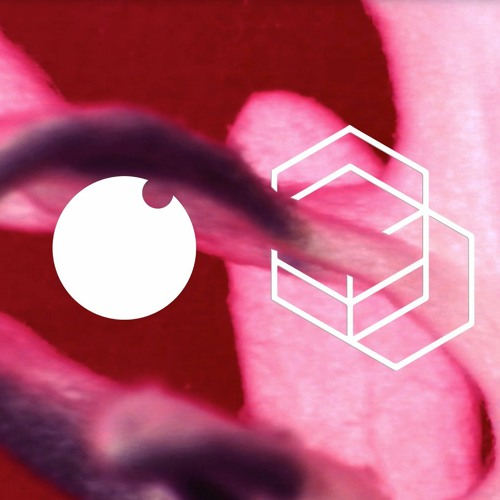 Intercell October Series | Perc Trax