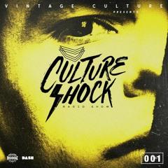 Vintage Culture - Culture Shock #001