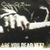 Are You Dead Yet (Album Version)